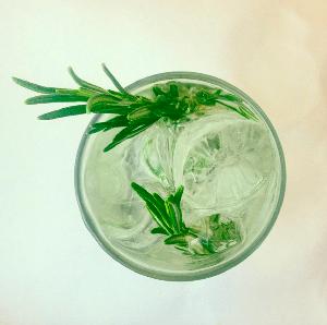 Aromatizar el Gin Tonic