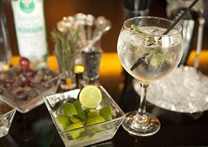 servir-un-gin-tonic-correctamente